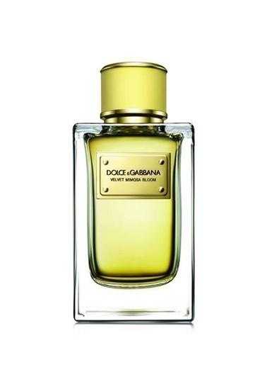 Dolce&Gabbana Velvet Mimosa Bloom EDP 150 ml Kadın Parfüm Renksiz